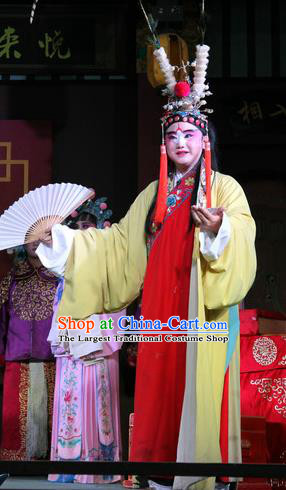 Jin Dian Jing Song Chinese Sichuan Opera Young Male Apparels Costumes and Headpieces Peking Opera Highlights Clown Garment King Songkang Clothing