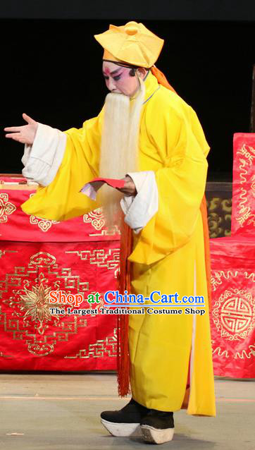 Bai Shou Tu Chinese Sichuan Opera Old Servant Apparels Costumes and Headpieces Peking Opera Highlights Elderly Male Garment Clothing