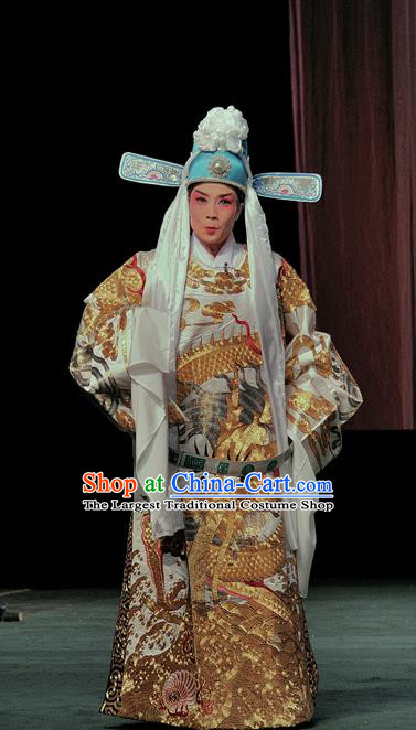 The Romance of Hairpin Chinese Sichuan Opera Scholar Wang Shipeng Apparels Costumes and Headpieces Peking Opera Highlights Niche Garment Official Clothing
