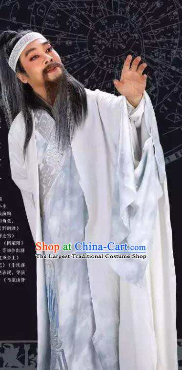 Luo Xiahong Chinese Sichuan Opera Elderly Scholar Apparels Costumes and Headpieces Peking Opera Highlights Astronomer Garment Laosheng Clothing