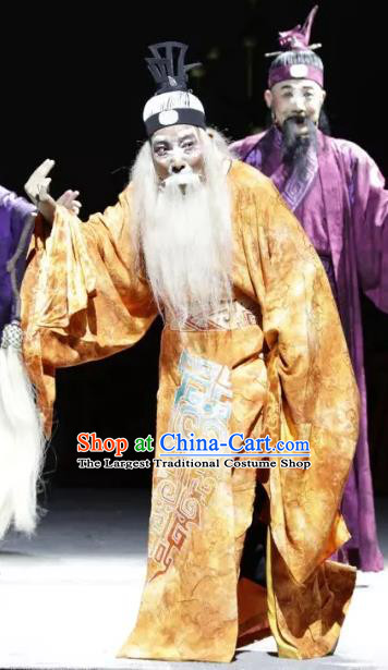 Luo Xiahong Chinese Sichuan Opera Elderly Male Apparels Costumes and Headpieces Peking Opera Highlights Lord Garment Laosheng Clothing