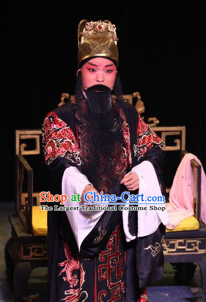 Tai Cheng Liu Chinese Bangzi Opera Elderly Male Apparels Costumes and Headpieces Traditional Hebei Clapper Opera Lord Garment King Xiao Yan Clothing