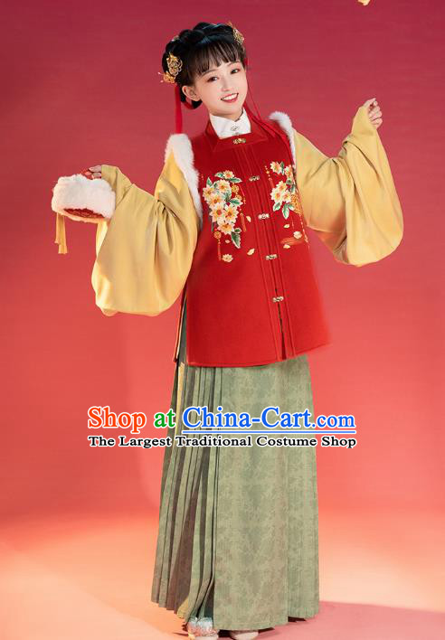 China Traditional Ming Dynasty Young Lady Historical Clothing Ancient Patrician Beauty Winter Hanfu Costume