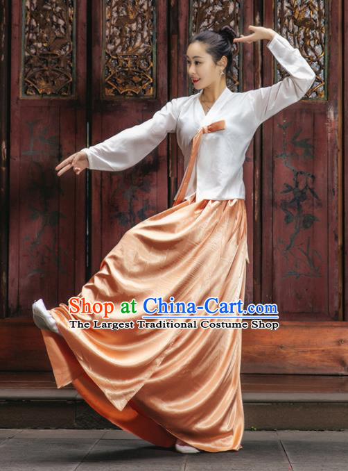 Handmade Chinese Classical Dance Clothing Traditional Korean Nationality Dance White Blouse and Orange Dress