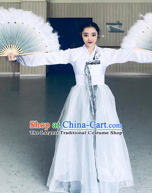 Chinese Classical Dance Clothing Traditional Korean Nationality Dance White Blouse and Dress Complete Set