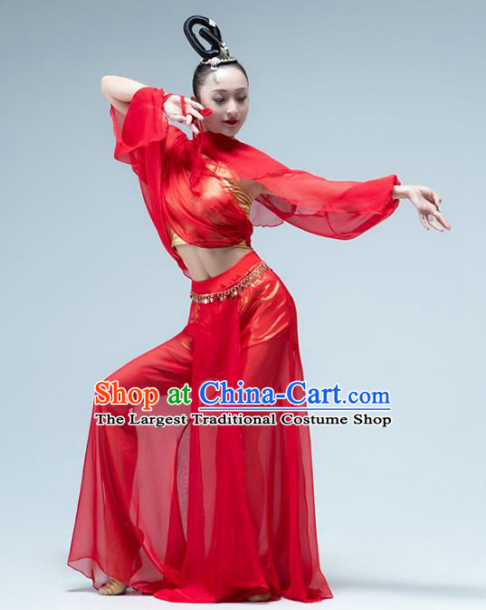 Traditional China Classical Dance Red Outfits Fan Dance Stage Performance Costume