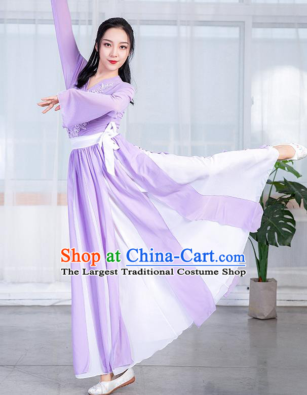 China Stage Performance Fashion Umbrella Dance Training Clothing Classical Dance Lilac Chiffon Dress